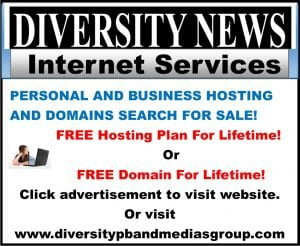 Diversity News Internet Services - Hosting Services and Domains Names Advertisement