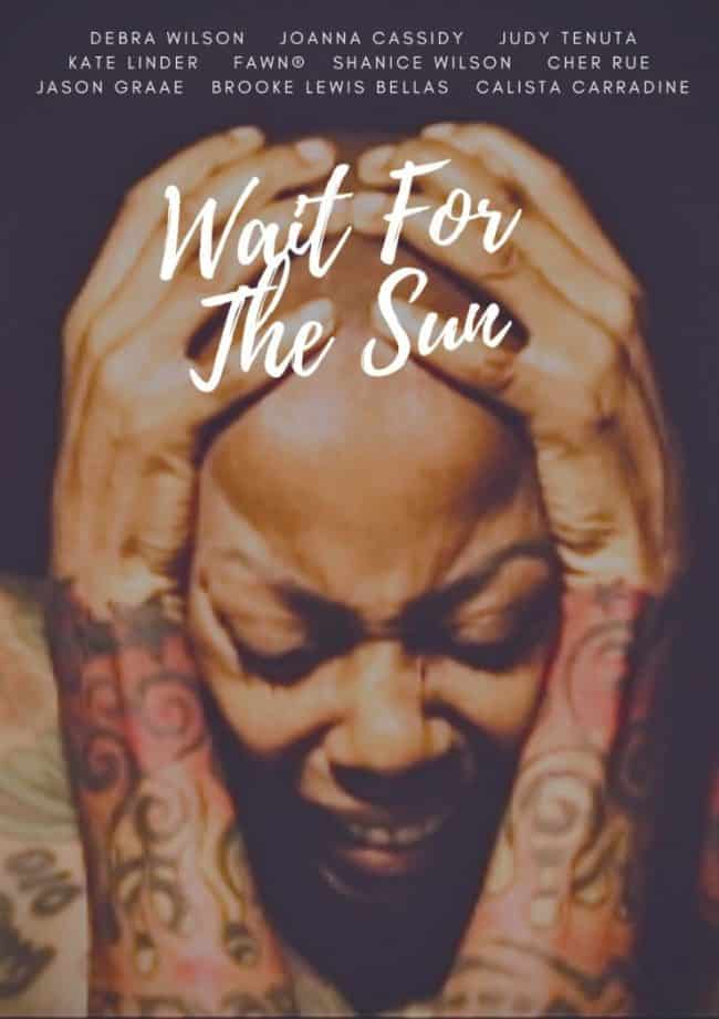 Recording-Artist-Fawn-Wait-For-The-Sun Featuring-Debra-Wilson-BLM-poster